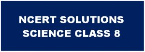 NCERT Solutions For Class 8 Science